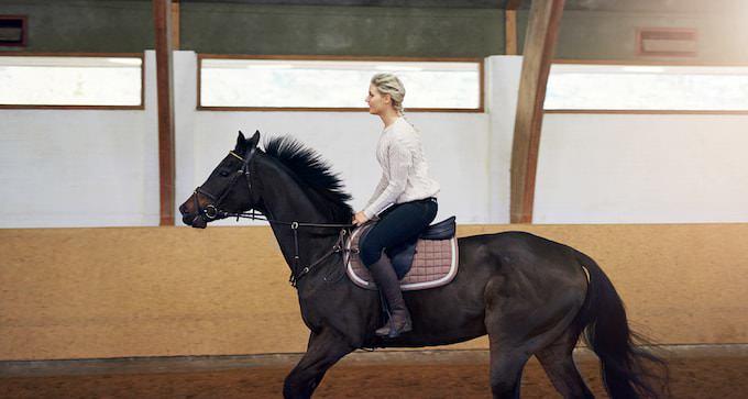 馬に乗る女性のスピード感