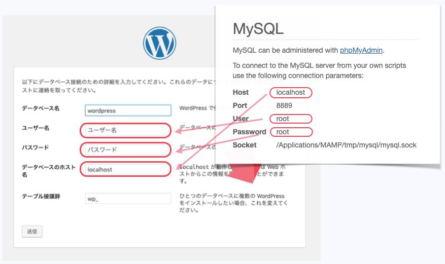 ローカル環境のMySQL情報を入力する